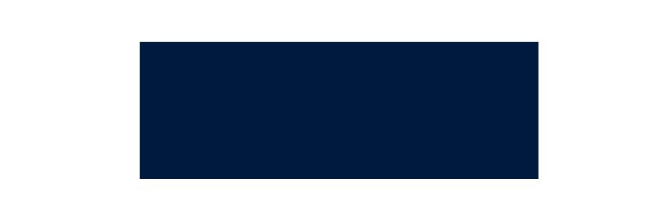 link logo